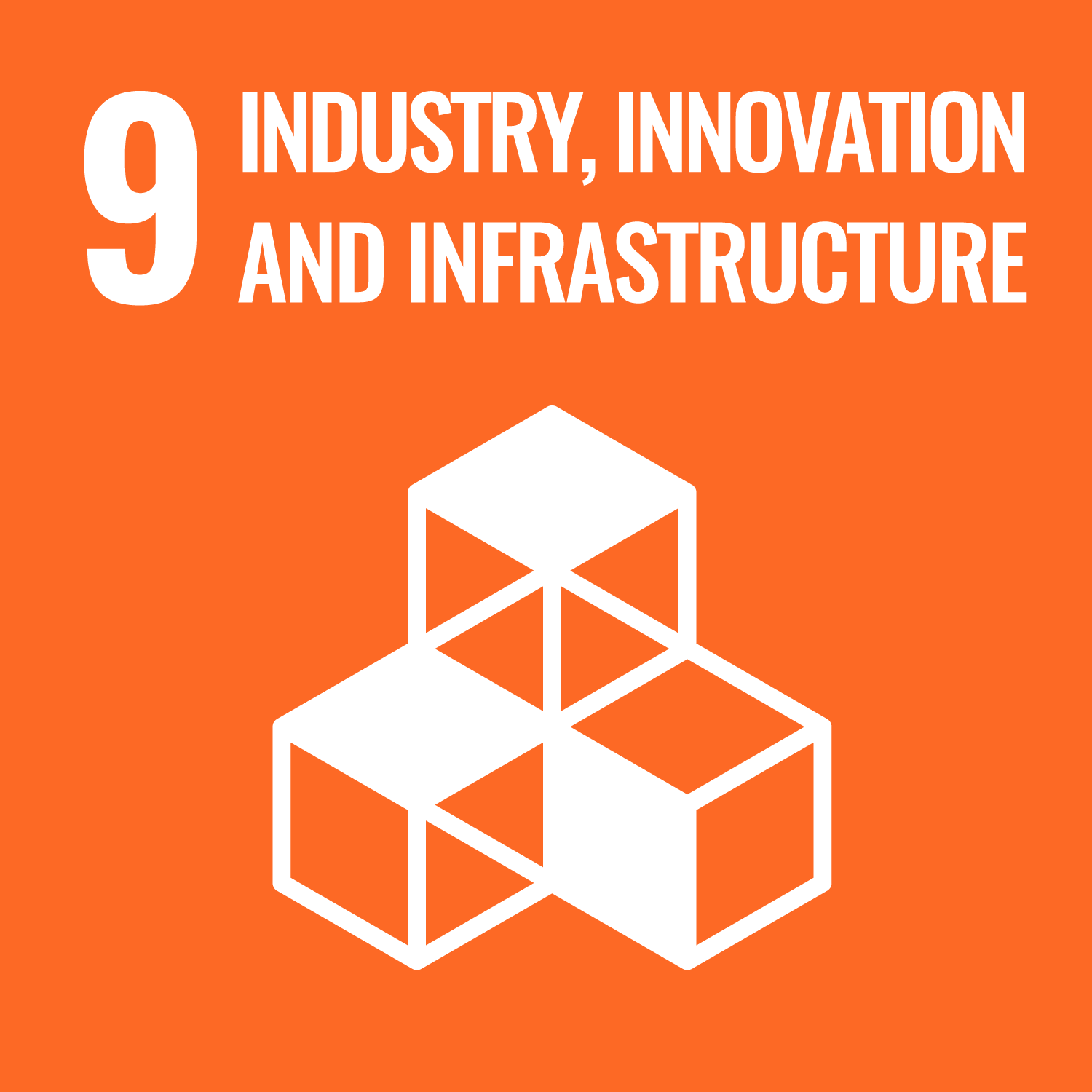 Logo featuring industry, innovation and infrastructure